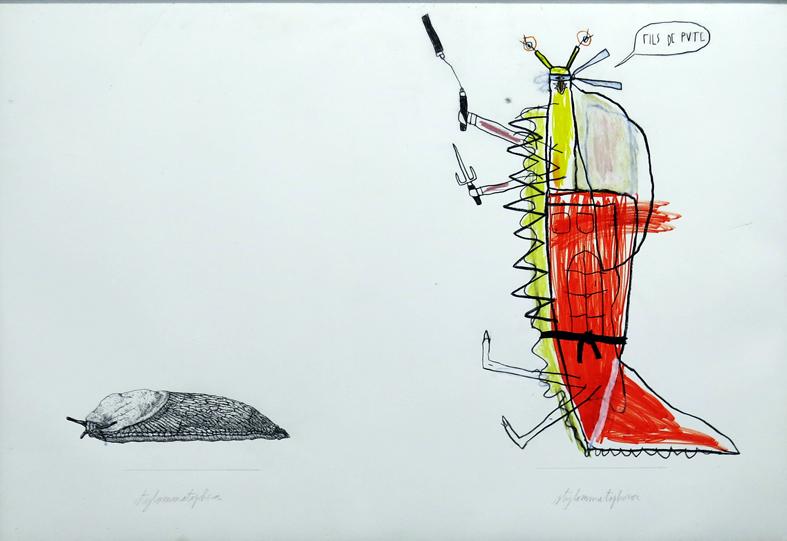 Adrien Vermont / Moyennes Planches d'Histoires Naturellement Bipolaires / Limace / Crayons sur impression sur papier, 82 x 120 cm / 2013